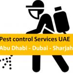 Pest control services in Dubai UAE